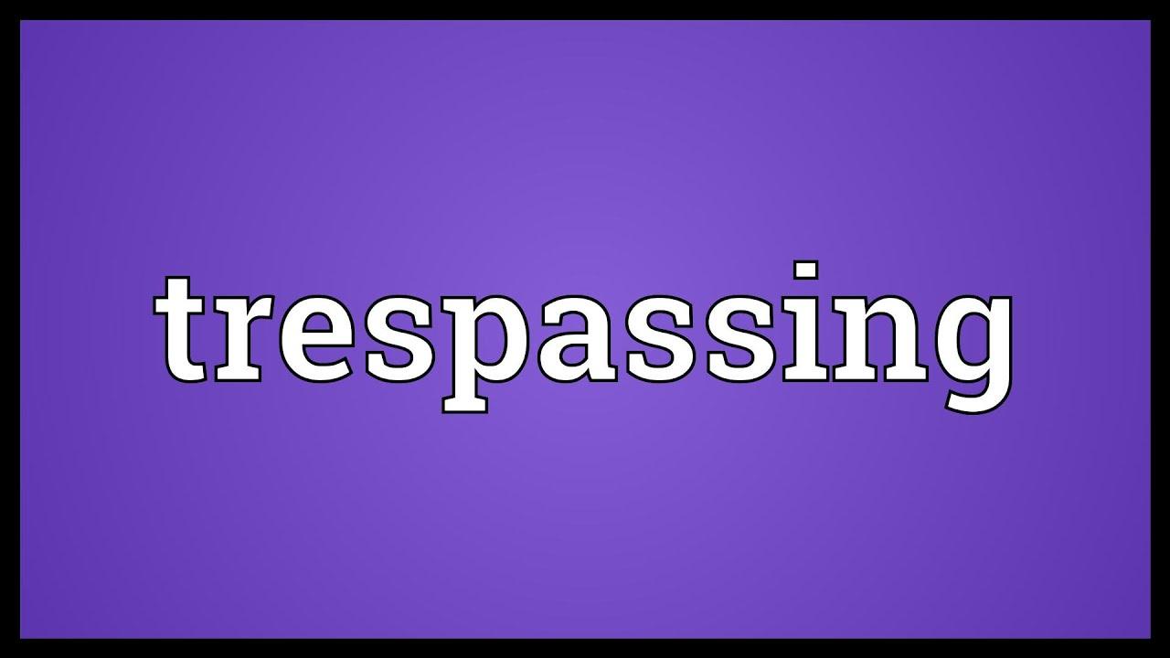 trespass meaning in urdu