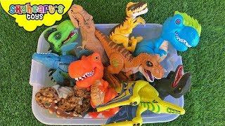 Dinosaur FIGHT in Box! Skyheart's Toys Pteranodon Megasaur Battle T-Rex kids