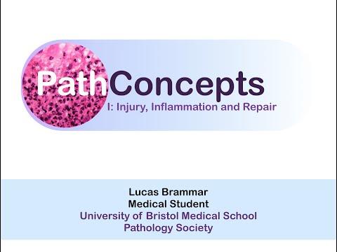 PathConcepts I - Injury, Inflammation and Repair