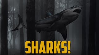 SHARKS!! (The Forest)
