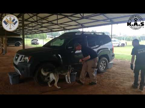 K9 Detection Class in Nacogdoches Texas
