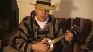 Ride My Llama - Neil Young Cover- Ukulele