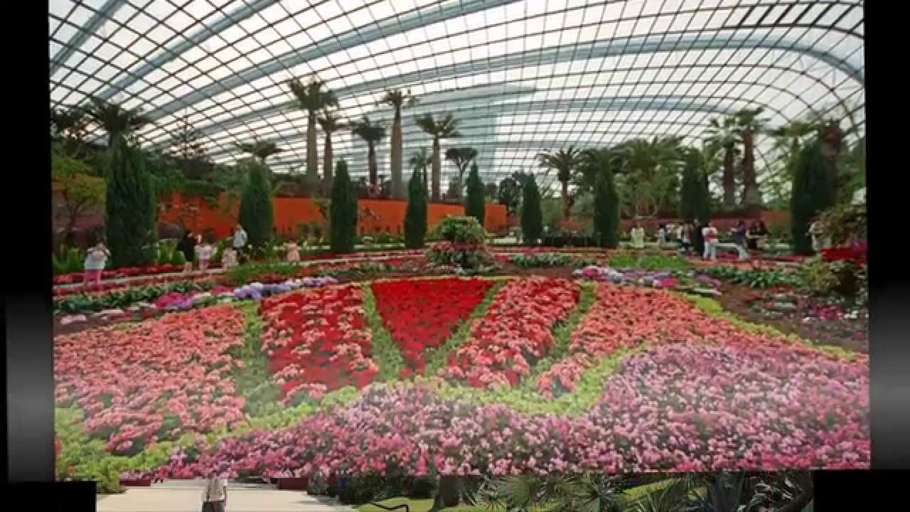 Gardens by the Bay - gardens by the bay singapore - singapore ...