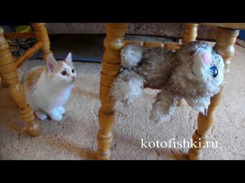 Игрушка Кошка для кота | Котенок без ума от мягкой игрушки-кошки