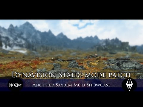 TES V - Skyrim Mods: Dynavision Static mode patch by looooots