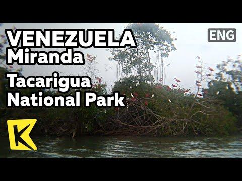 【K】Venezuela Travel-Miranda[베네수엘라 여행-미란다]타카리구아 국립공원/Tacarigua National Park/Laguna de Tacarigua
