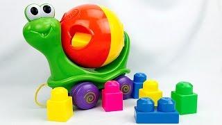 Carros para Niños - Tortuguita con Figuras Geometricas - Juguetes para Niños