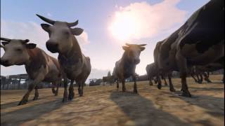 GTA 5 Cows to the Water