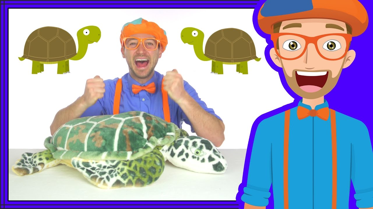 Animal Songs for Children | The Tortoise Song by Blippi