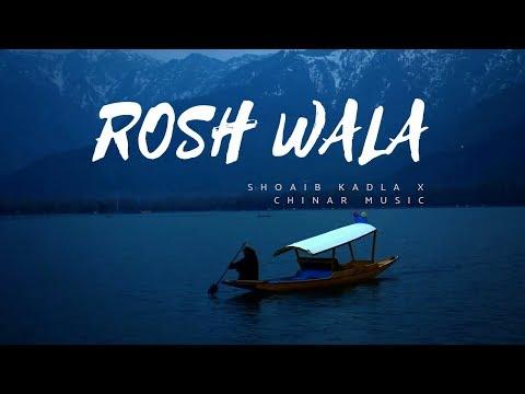 Rosh wala (instrumental) Chinar Kashmir