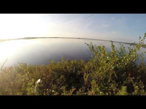 рыбалка сетями на озерах в таежных деревнях в ютуб