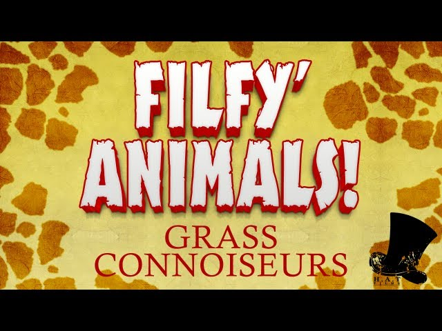 Filfy Animals - Grass Connoisseurs