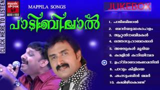 Mappila Pattukal Old Is Gold | Paadibilaal | Kannur Shareef Mappila Songs