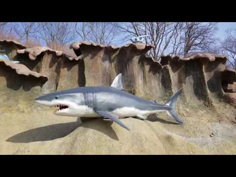 Как доехать до океанариума во владивостоке