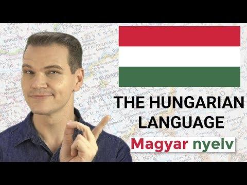 The Hungarian Language: Magyar nyelv