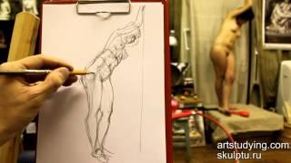 Обучение рисунку. Фигура. 4 серия: наброски женской фигуры и понятие