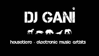 Put your handzZ up Vol.1 - DJ GANI [HOUSETIERE]