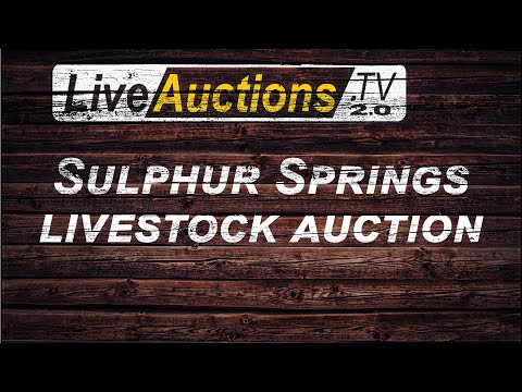 Sulphur Springs Livestock Auctions