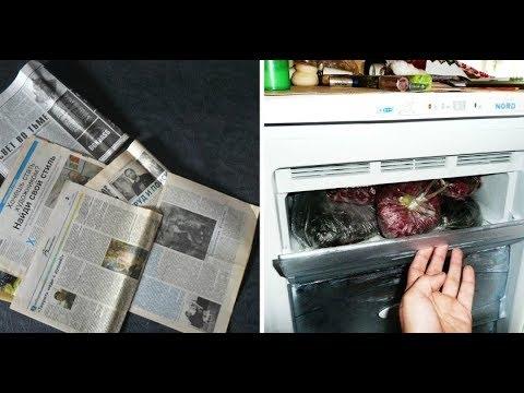 Она положила Газету в Морозильник. И вот что получилось