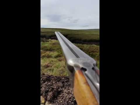 Driven grouse shooting in weardale
