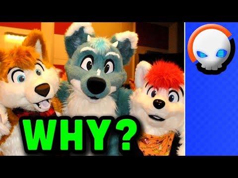 Why do Furries Exist? - A Fur-real look at the Fandom | Gnoggin