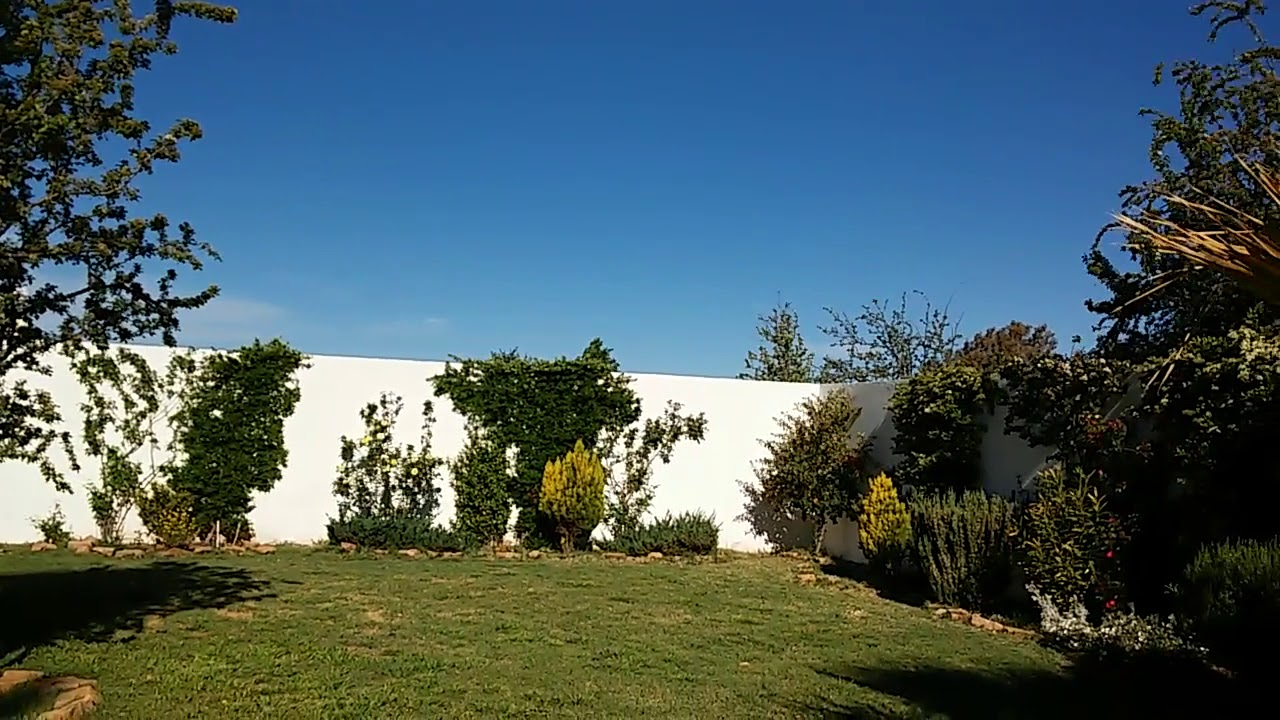 Vista del patio (La Suite)