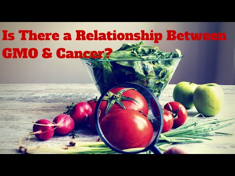 Is There a Relationship Between GMO (Genetically Modified Food) & Cancer?