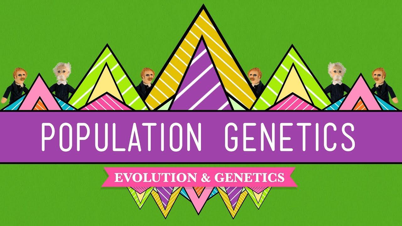 Population Genetics When Darwin Met Mendel Crash Course Biology Animal Mendelian Diagram Chickens Vintageprintable 18 Youtube