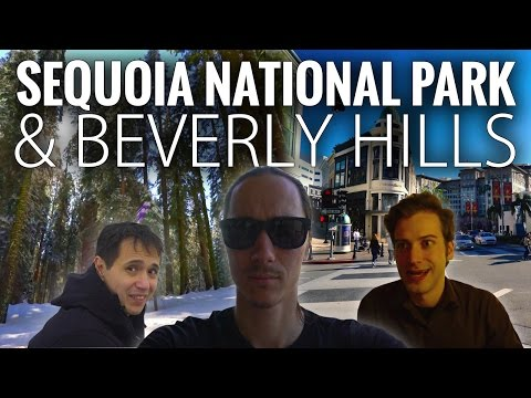 Sequoia National Park and Beverly Hills in 4K | California Roadtrip