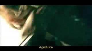 Apocalyptica Bittersweet traducida