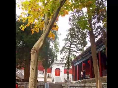 henan travel guides, china travel trip