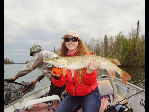 Giant Pike & Walleye on a Fly | Ganglers North Seal River Lodge