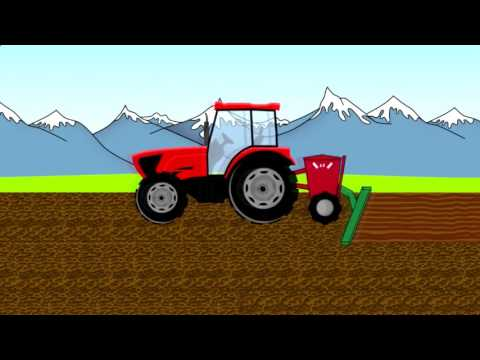 Harvest   Animation for children   Children's Stories