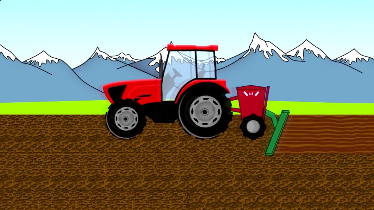 Harvest Animation for children