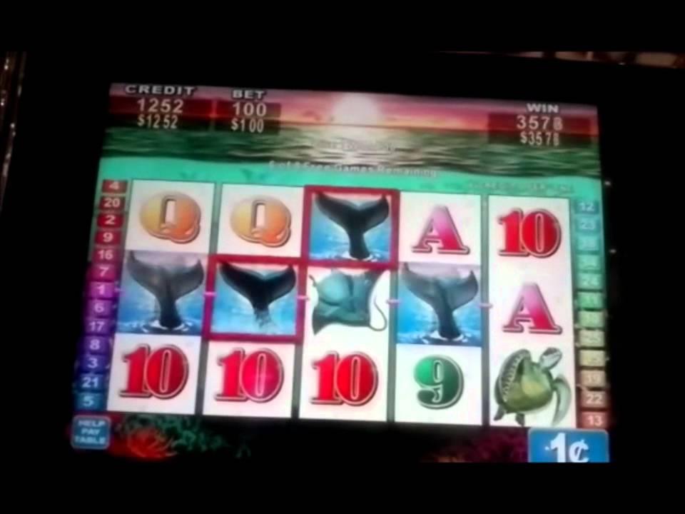 Oceans Wild Slot Machine