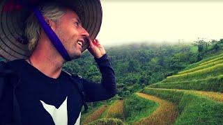 Working Terraced Rice Field in Vietnam 🇻🇳