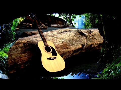 RELAXING ACOUSTIC GUITAR MUSIC 2 HOURS - RAINFOREST SOUNDS  MEDITATION  YOGA SPA - SLEEP STUDY MUSIC