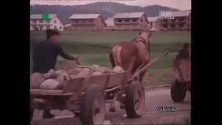 MANIOWY - Film dokumentalny: Zapora