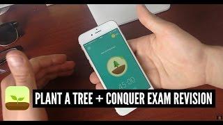 Plant a Tree + Conquer Exam Revision