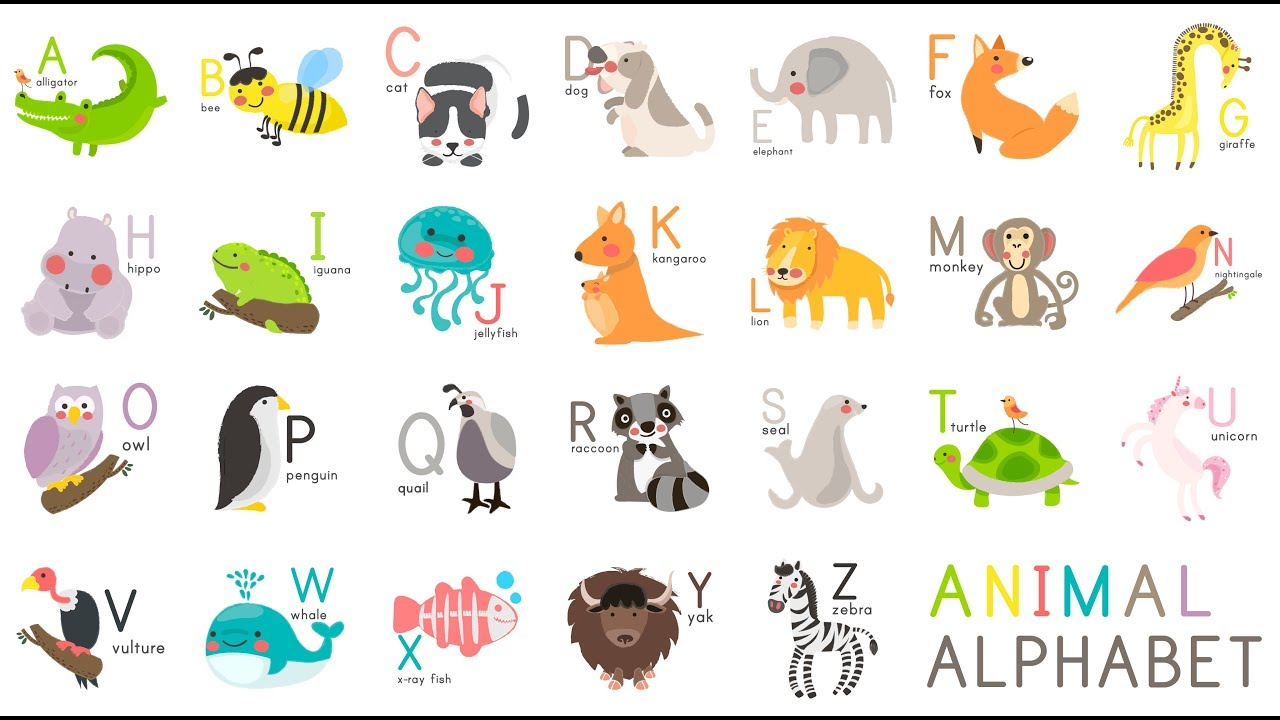 Learn Animal Alphabet - A For Alligator - ABC Alphabet Songs with Sounds for Children