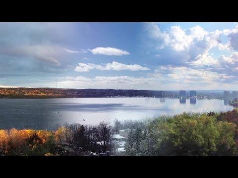 Visions of Lake