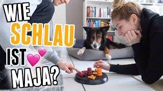 Unboxing, Hundespielzeug-Test und Hendriks Krise! - Vlog 117