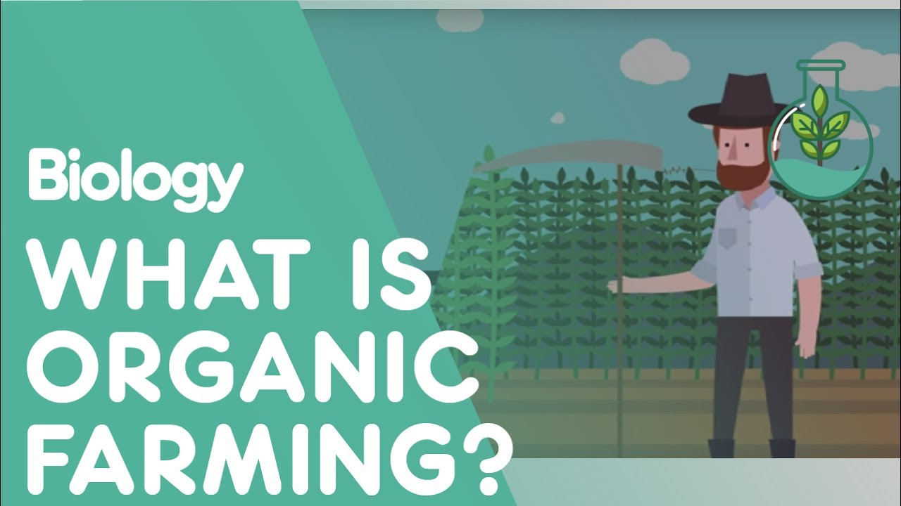 What is organic farming? | Biology for All | FuseSchool