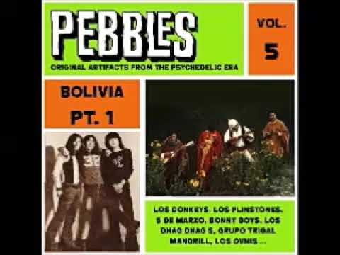 Various – Pebbles Vol. 5 BOLIVIA Pt. 1, Original Artifacts From The Psychedelic Era 60s Garage Rock