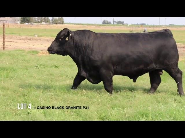 Dal Porto Livestock and Rancho Casino Lot  4