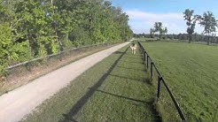 Legacy Equestrian Center in Chesterland, Ohio. 81 stalls on 142 acres