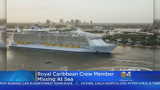 Coast Guard Searching For Missing Cruise Ship Member