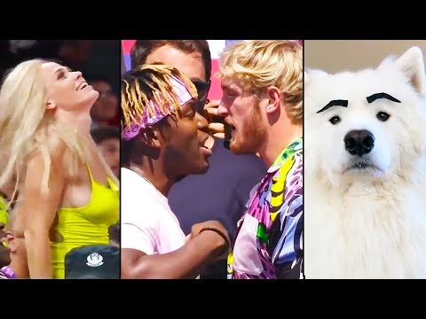 Ozzy Man Reviews: WTF Happened in September 2019