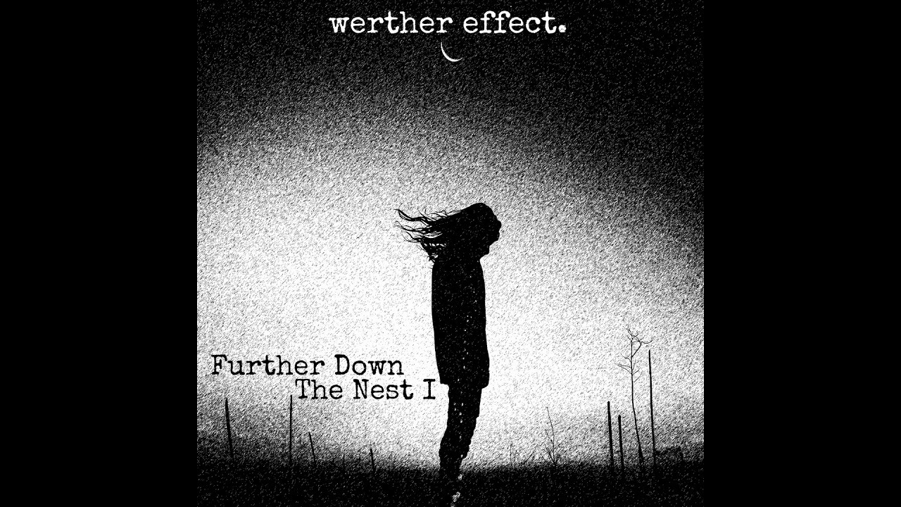 Werther Effect - Further Down the Nest I (Mgla Cover)