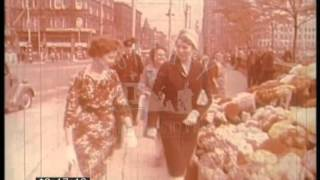 Farming In Ulster, 1950s - Film 44959